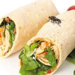 Advances in flying insect control improve food  safety
