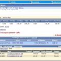 Customer Account Screen