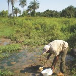 Larval Source Management: A Supplement Measure for Marlaria Control