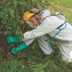 Using pesticides in amenity areas