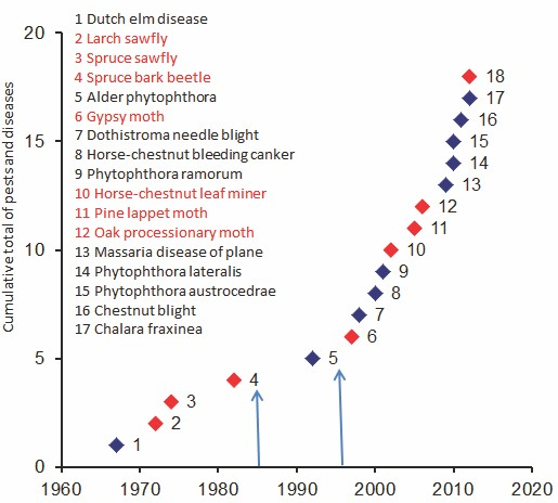 Current and future insect threats to UK forestry