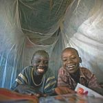 Insecticide Treated Bednets for Malaria Control